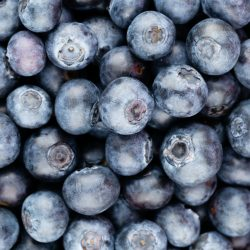Fresh blueberry background. Texture blueberry berries close up.